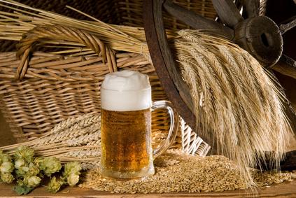 Bierbraukurs - Eigenes Bier selber brauen lernen